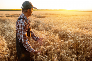 Cash flow is king for agribusiness