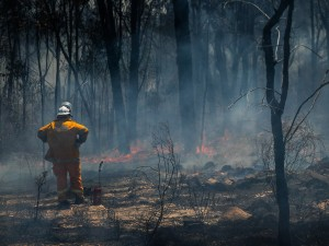 The impact of bushfires on the workplace